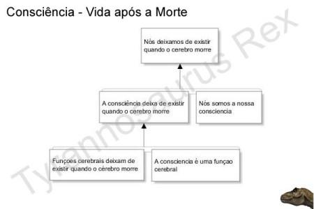 Consciencia_Vida_apos_a_Morte_3